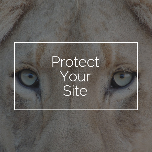 Security Plugin Protect Your Site